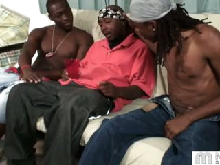 Kane, mr. darvin and pharaoh: the frisky darksome homosexual guys